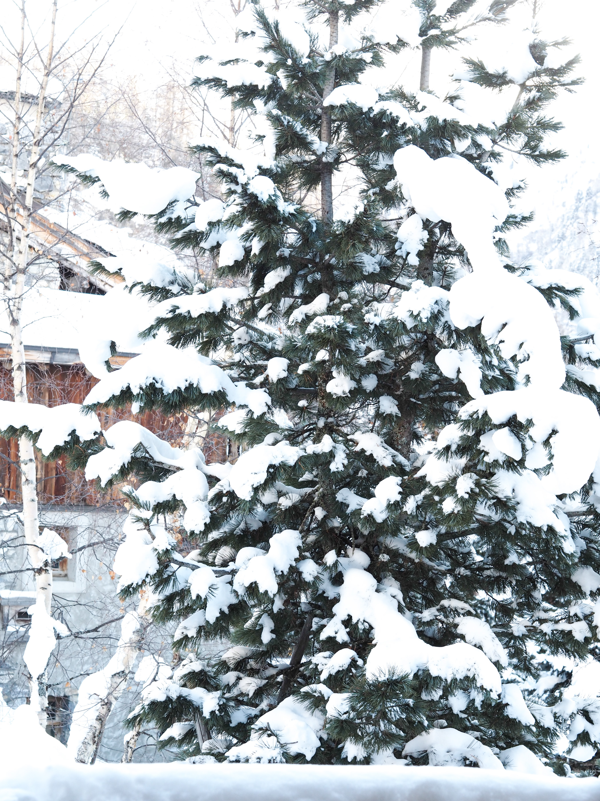Mediamarmalade_Winter_style